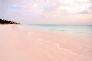 Pink Sands Beach, Harbour Island, The Bahamas, West Indies, Central America